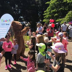 Plunket Teddy Bears Picnic