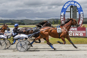 Winton Harness Racing Club